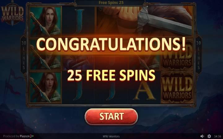 Online Casino Bonus, Wild Warriors