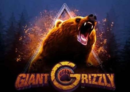 Giant Grizzly – krenite u lov na sjajne  kazino bonuse!